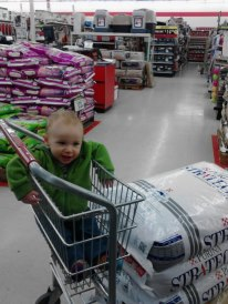 TSC shopping