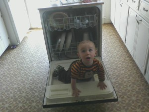 Dishwasher Jungle Gym