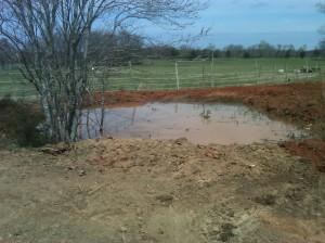 Redoing the pond