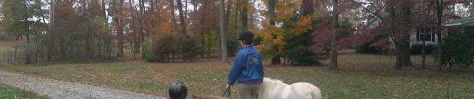 Pony Stroll